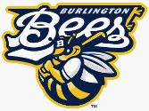 Burlington Bees website