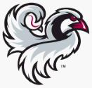 Idaho Falls Chukars website