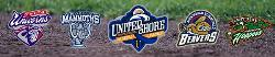 United Shore Professional Baseball League website