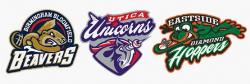 Buy United Shore Professional Baseball League Tickets