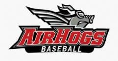 Texas AirHogs website