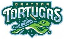 Daytona Tortugas website